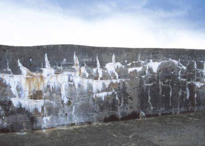Mur Goya