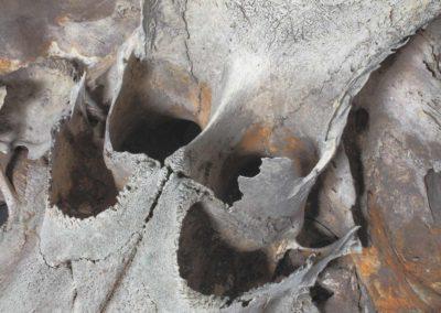 Masque vénitien, Venetian  mask- Crâne de Globicéphale, Pilot whale's skull - Bernard Neau